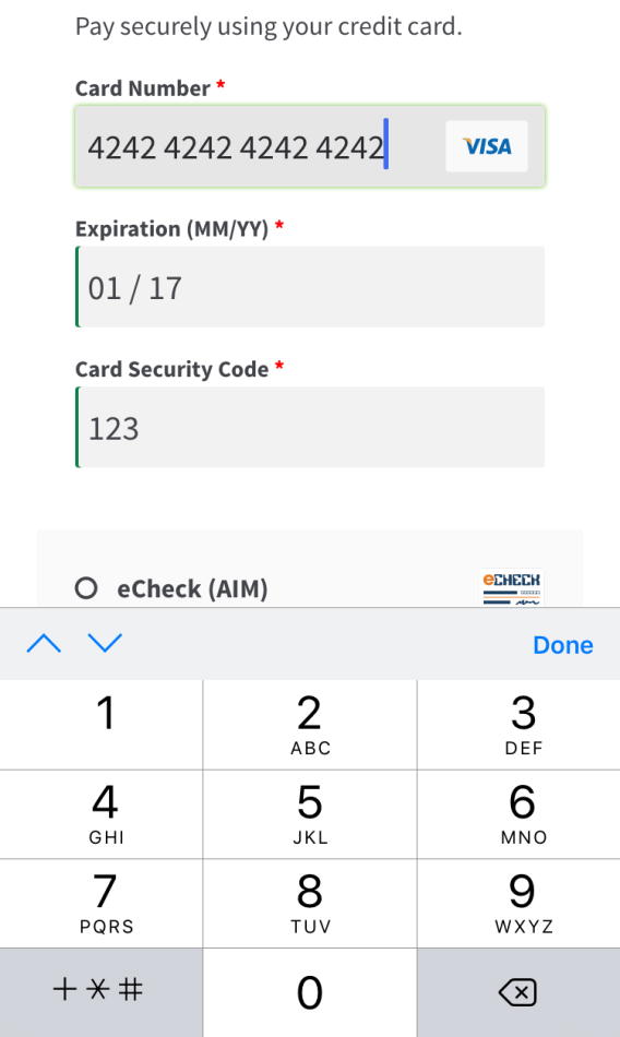 Mobile Credit Card Form