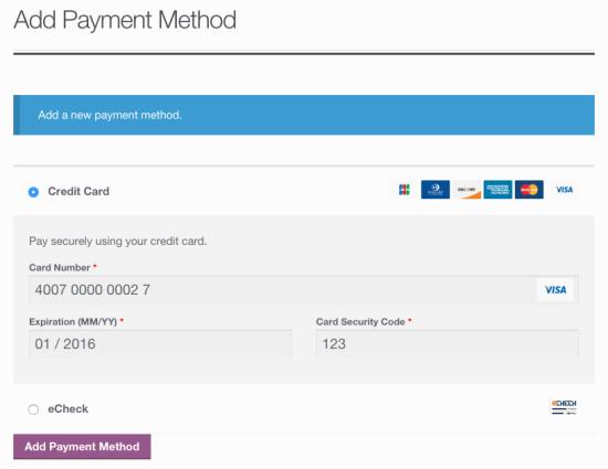 Customer Add Saved Payment