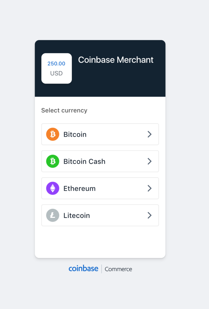 Cryptocurrency Payment Screen